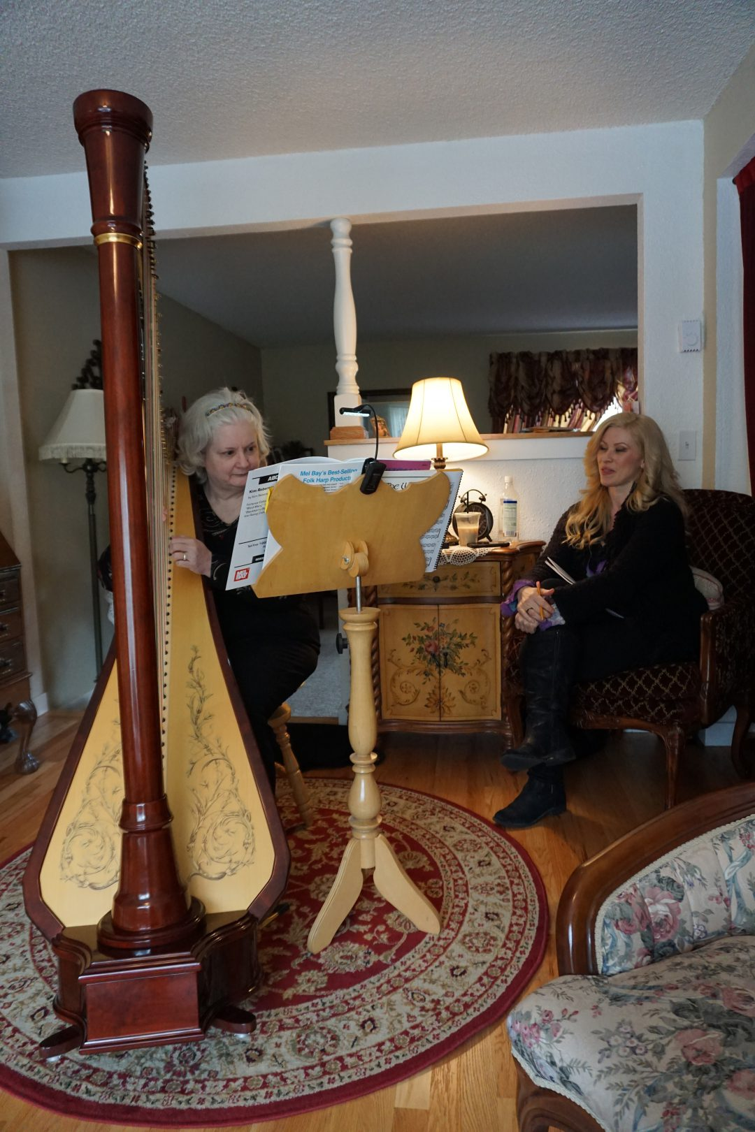 Harp Lessons And Sales The Enchanted Harp